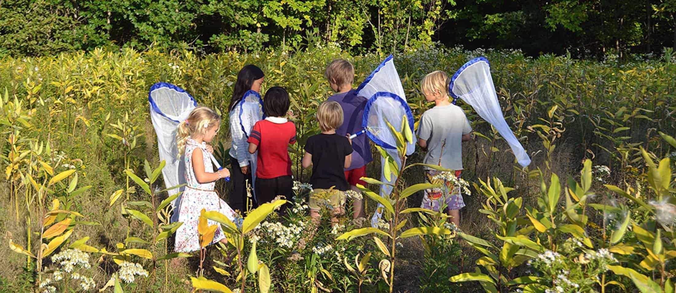 Children look for monarch butterflies during a citizen science program to tag butterflies for Monarch Watch. Photo: Ashley Megquier.