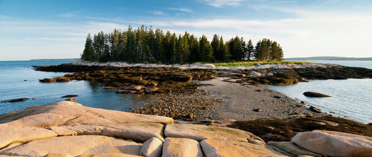 May 17 to 21 shoot on Black Island and Kitteredge Brook Forest for Maine Coast Heritage Trust