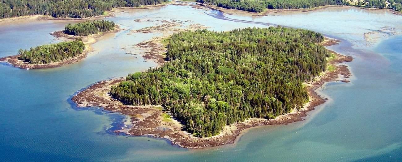 Thomas Island aerial