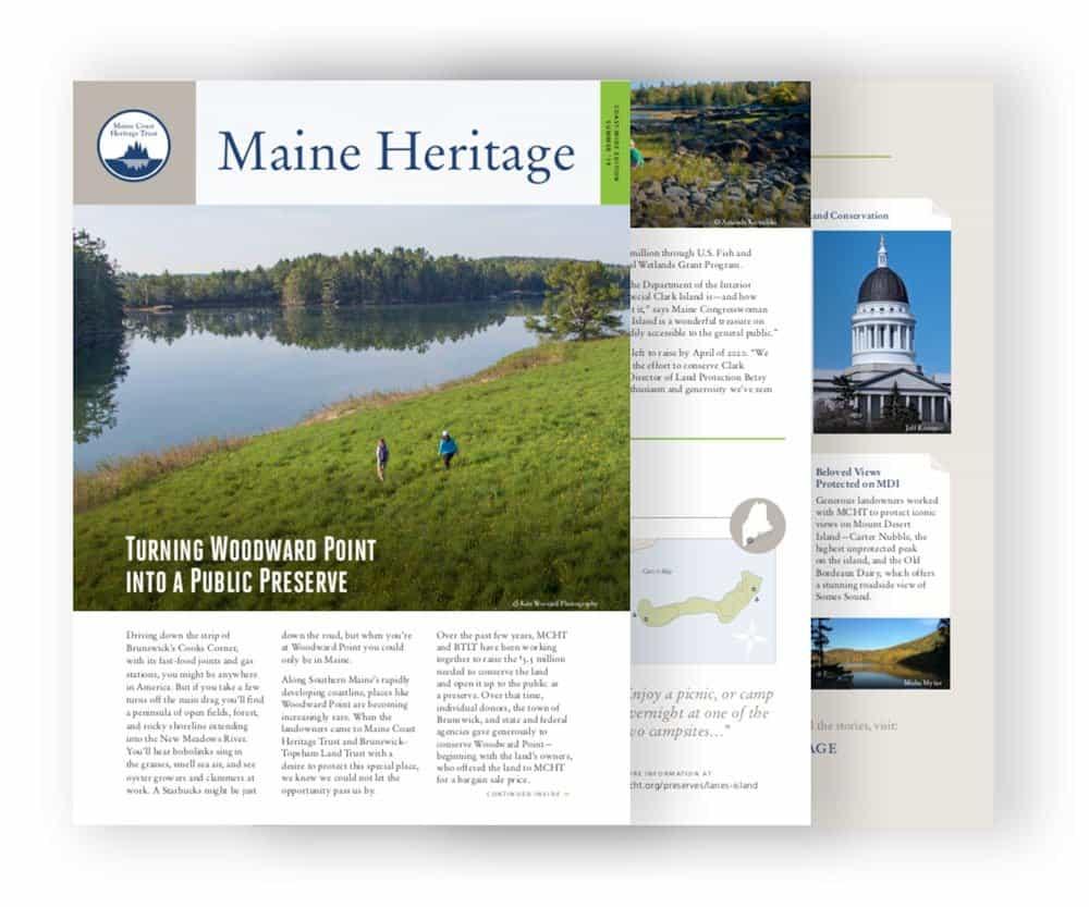 newsletter-composite