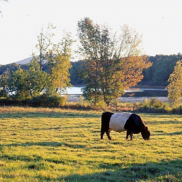 mcht-aldermerefarmrockportmaine2-2000-saragray-w1200h630