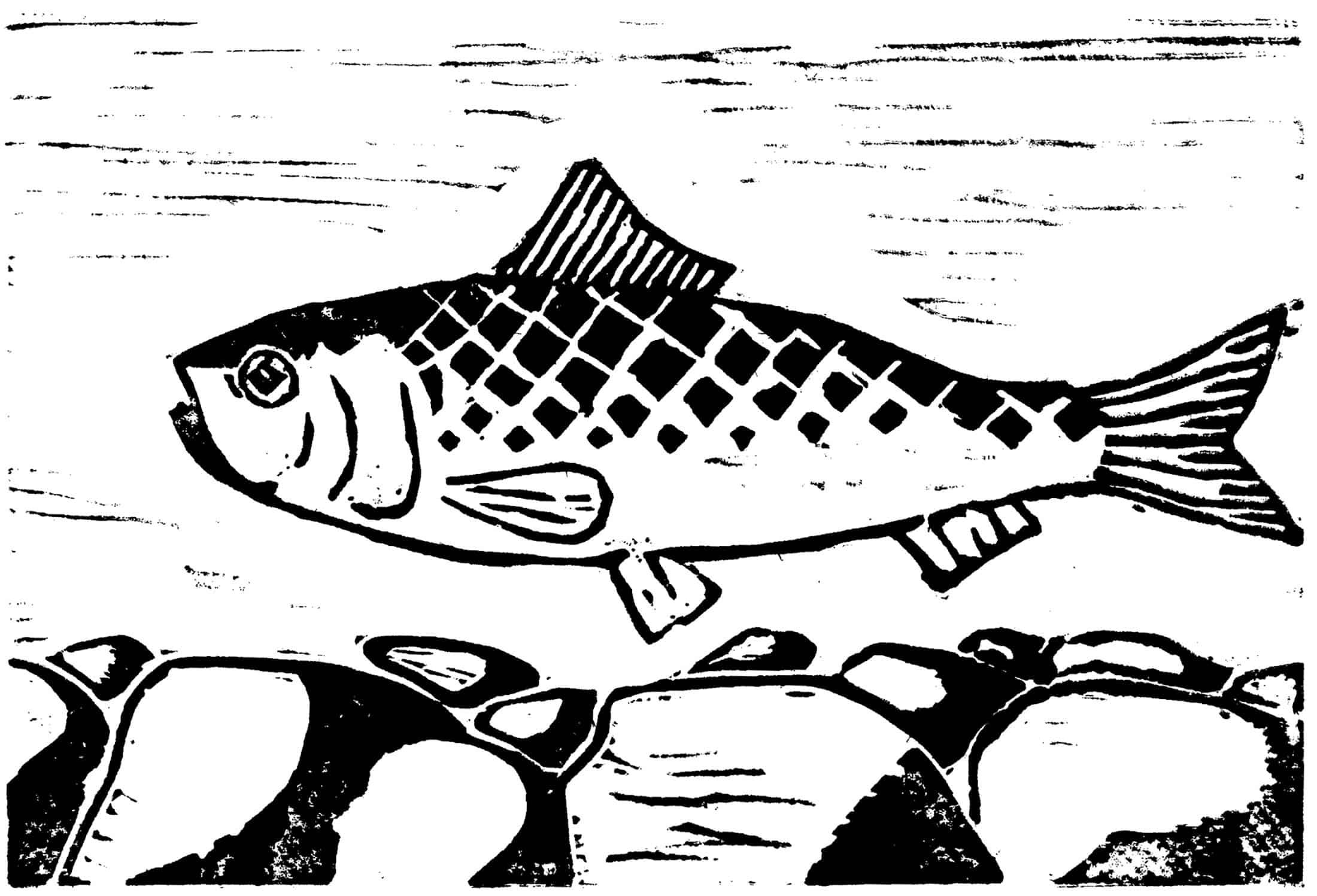 Neil Gabrielson, Alewife, 2019, linocut print, 6 x 8 inches