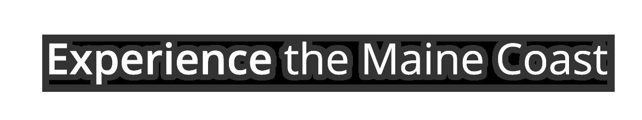 mcht-054-wordmark-2020-02-27b