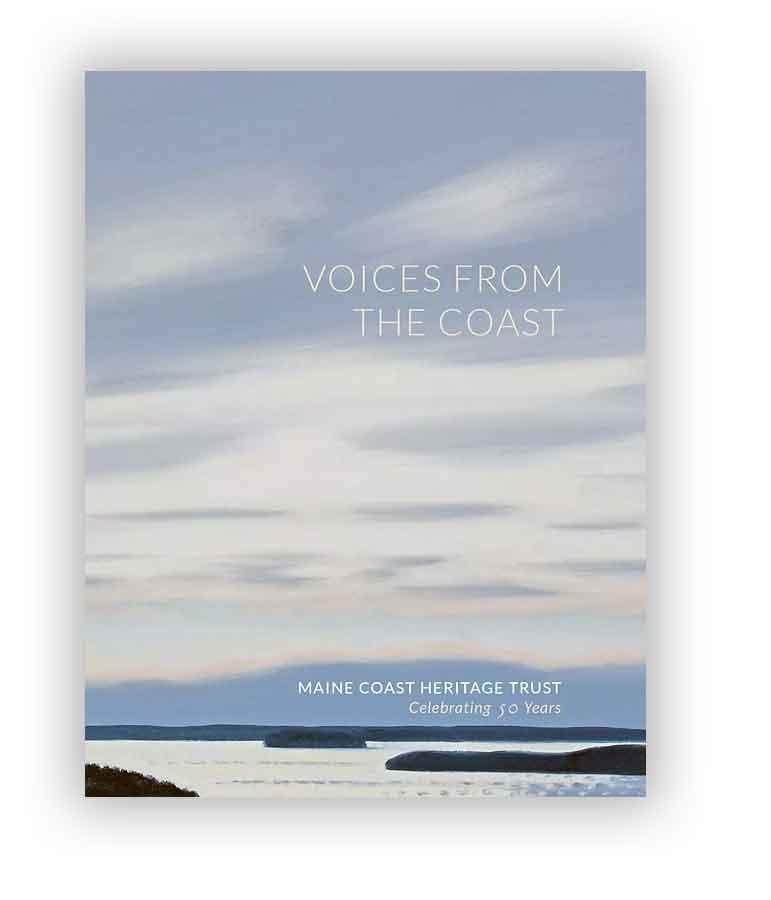voices-composite5