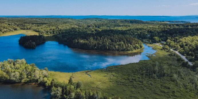 After conserving numerous acres around Seal Cove Pond and Seal Cove over the past several decades, MCHT is now focusing attention on restoring fish passage in the brook that connects the two, which runs along and then under Route 102.