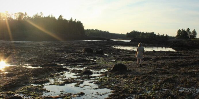 MCHT Land Steward Deirdre Whitehead walks Sipp Bay Preserve.